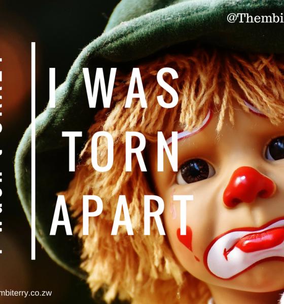 I Wasn't Crazy, I Was Torn Apart